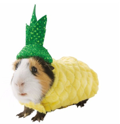 Thrills & Chills™ Pineapple Small Pet Costume