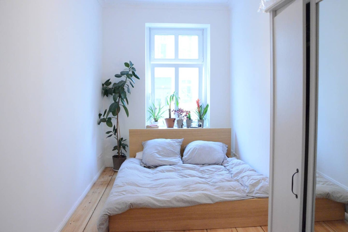 A well-lit private room in an apartment in Berlin on Airbnb lets you chill with cats and explore the...