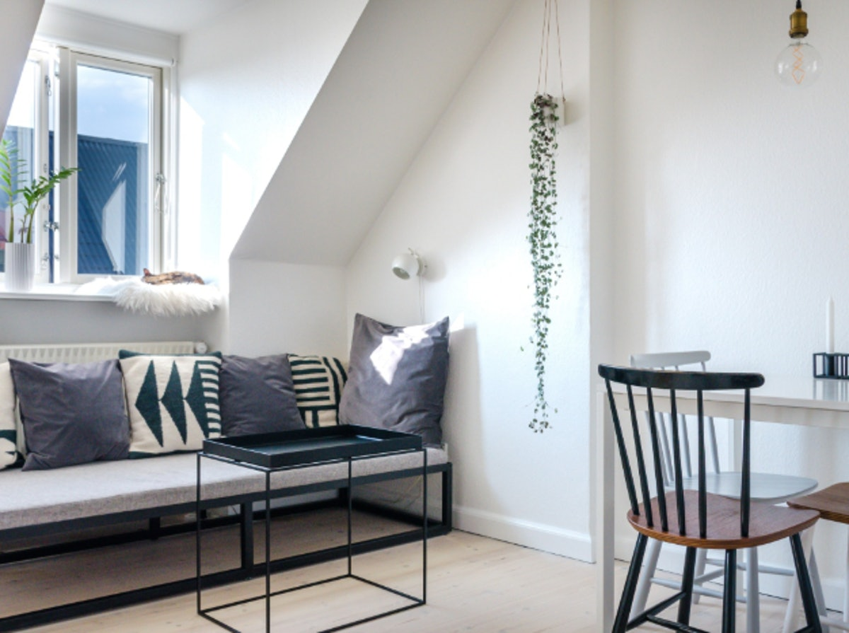 You can rent a Copenhagen home on Airbnb with a sociable cat, stylish kitchen, cozy living room, and...