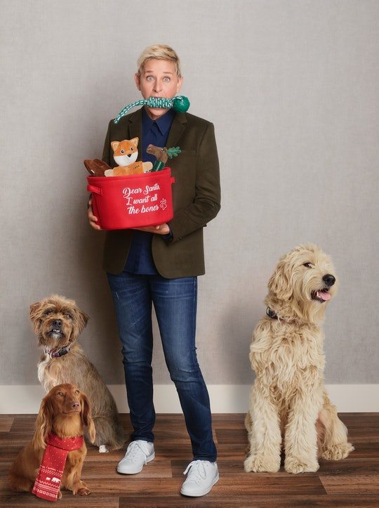 Ellen DeGeneres designed Christmas outfits for dog for Kohl's.