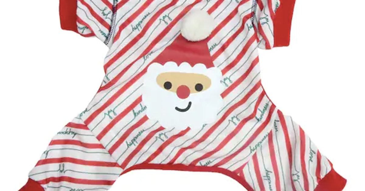 Ellen DeGeneres' Christmas Sweaters For Dogs Are Festive As Ruff