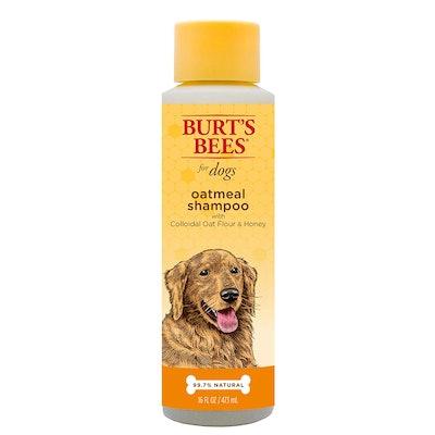 Burt's Bees Oatmeal Shampoo For Dogs (16 ounces)