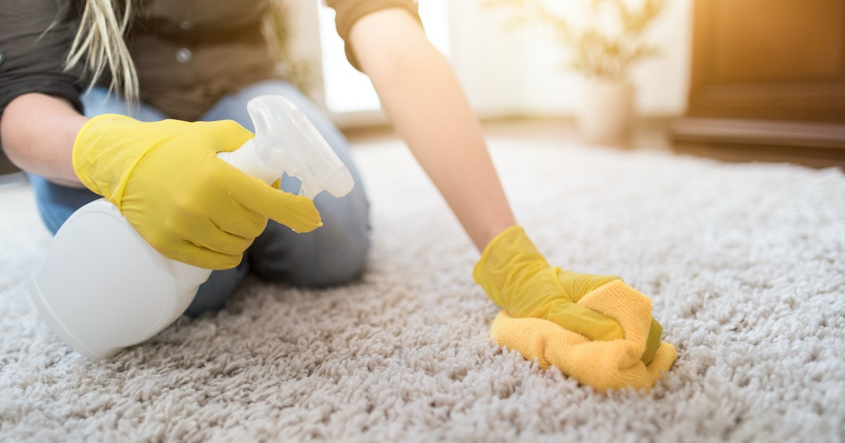 The 4 Best Carpet Spot Cleaners