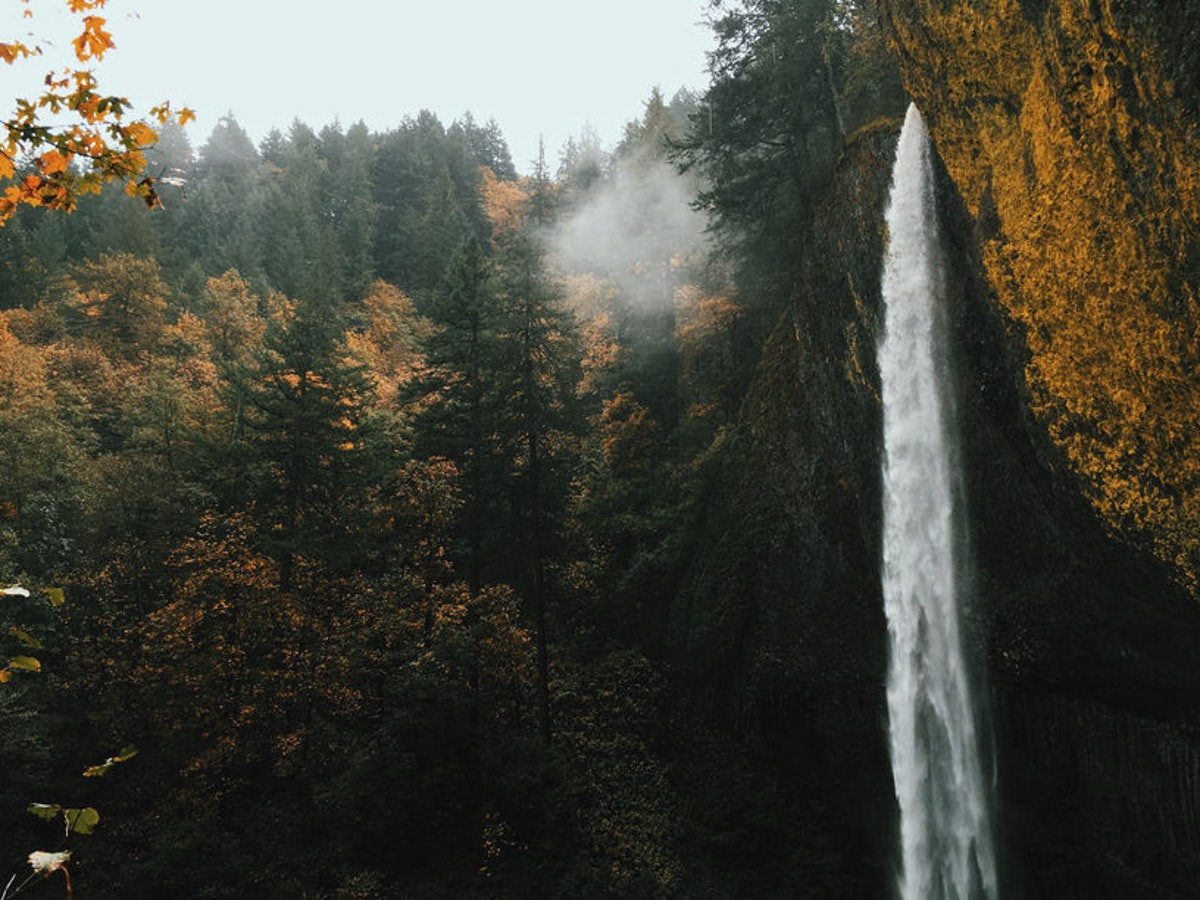 A waterfall in the Columbia River Gorge in Oregon is surrounded by fall foliage, mist, and sunshine.