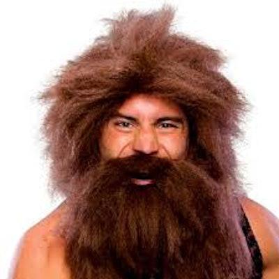 Spirit Halloween Beard and Wig
