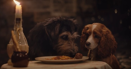 The dogs in Disney's live action reboot of 'Lady and the Tramp' share a plate of spaghetti.
