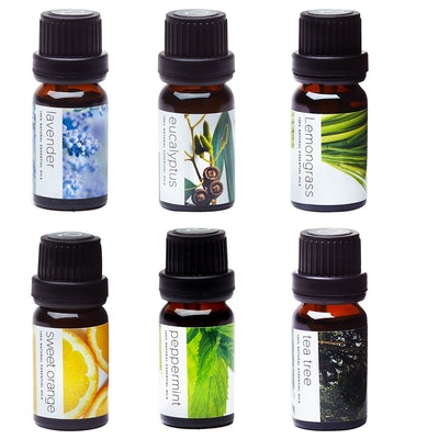 Pure Aroma Therapeutic Grade Essential Oils Kit (6-Pack)