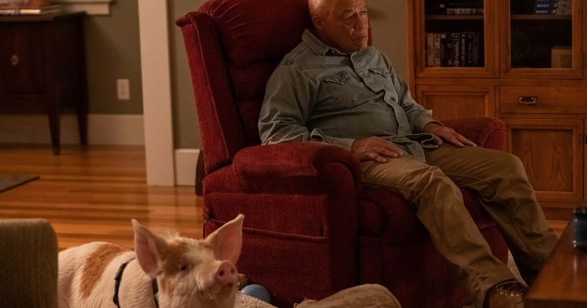 Is Warren Chambers From 'Limetown' Based On A Real Person? He Really Cares About Pigs