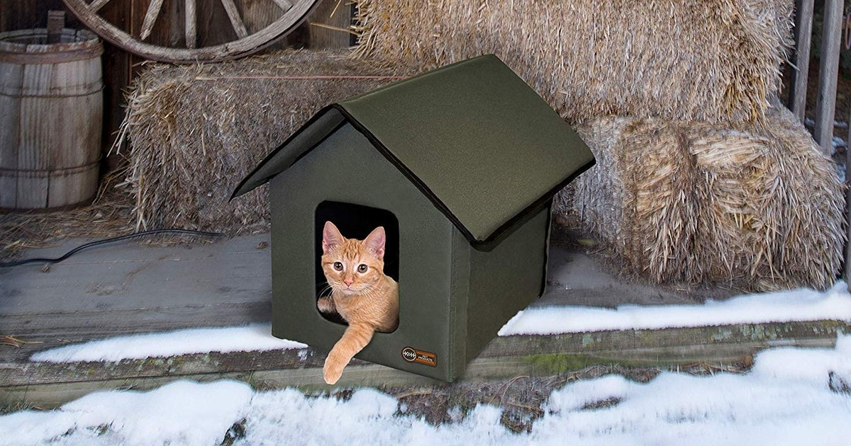 This Heated Cat House From Amazon Is A Winter Must-Have
