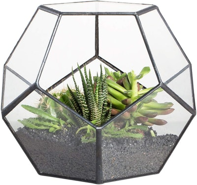 Black Glass Geometric Terrarium