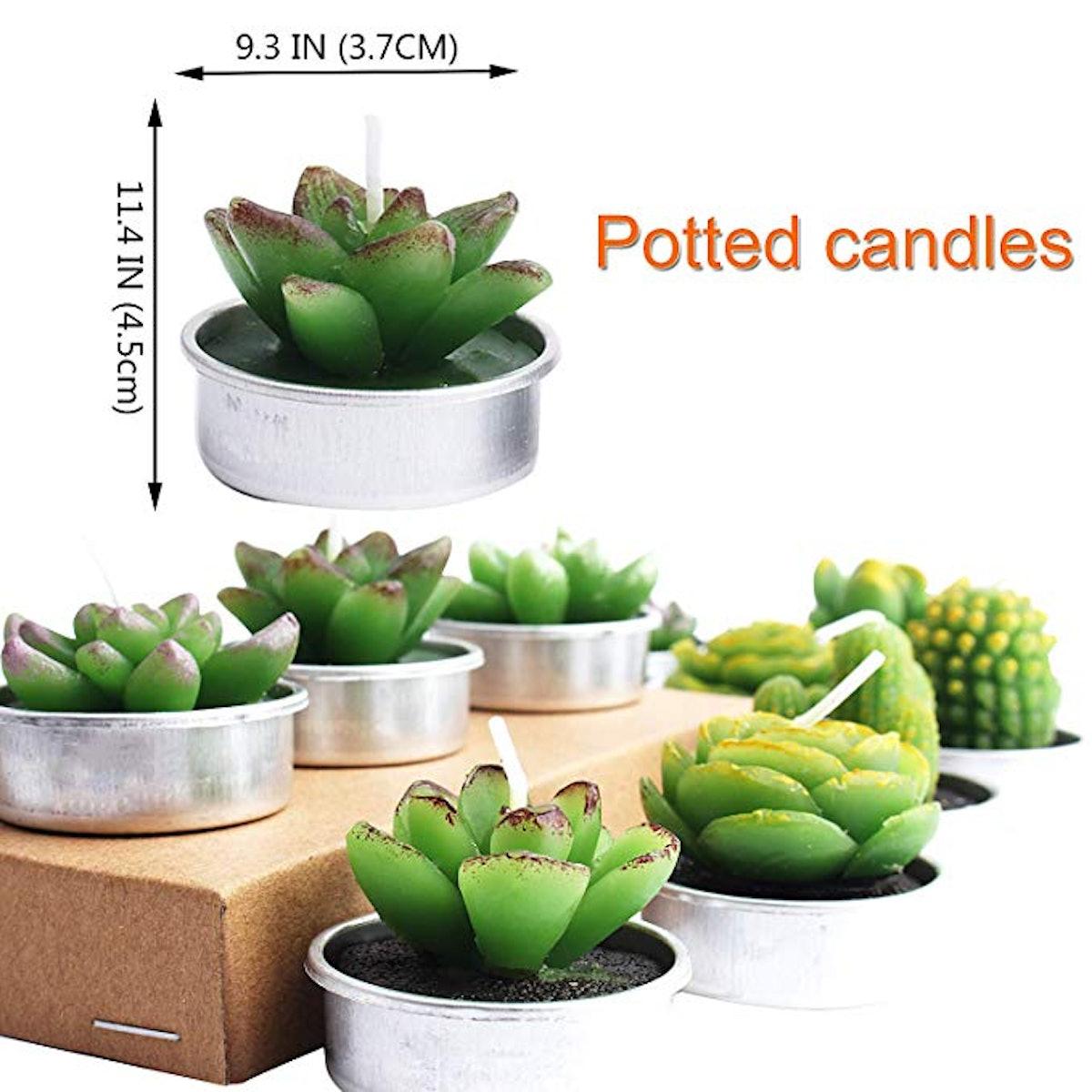 Outee 12 Pcs Cactus Tealight Candles