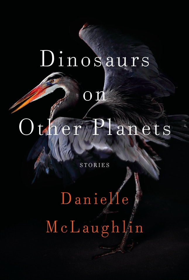 """An image of 'Dinosaurs on Other Planets' by Danielle McLaughlin, which contains the short story """"Hook."""""""