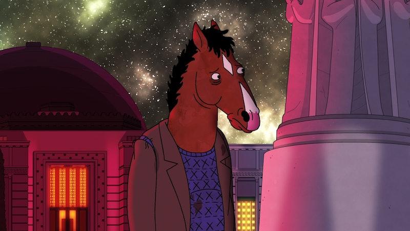 BoJack Horseman (voiced by Will Arnett) in BoJack Horseman