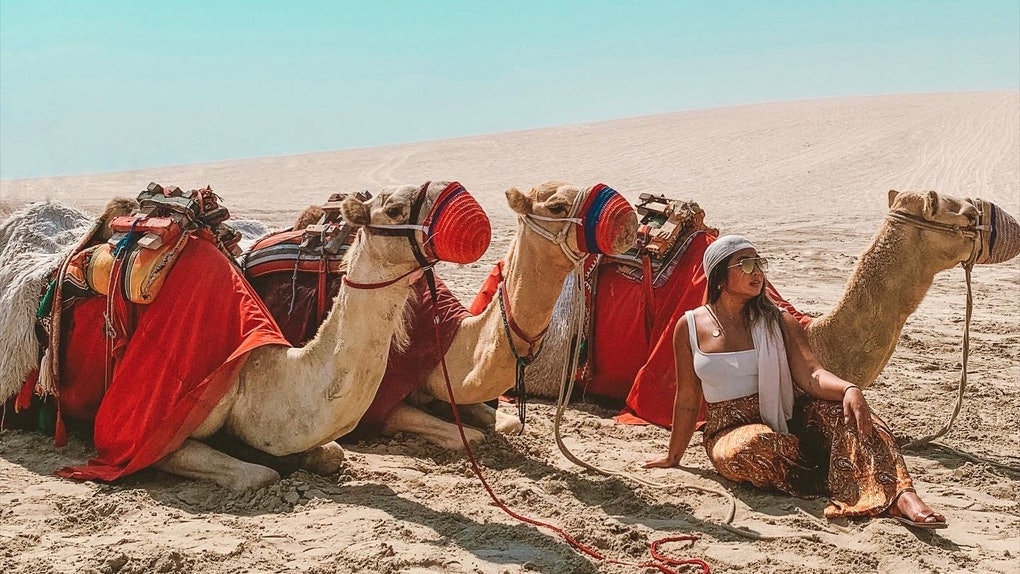 A woman in a white tank top and brown pants with a scarf wrapped around her head sits in the sand surrounded by three desert camels.