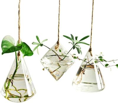 Ivolador Hanging Glass Terrarium (Set of 3)