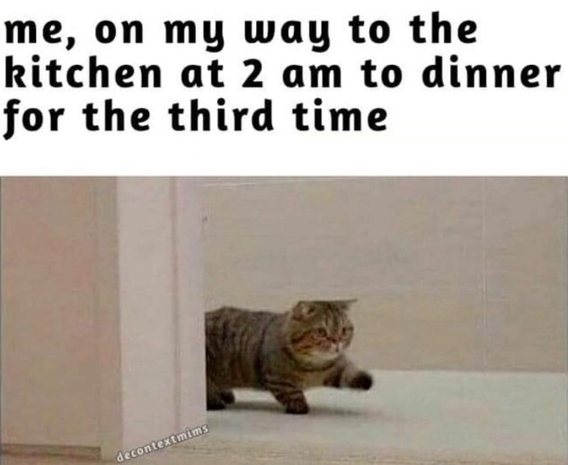 an image of a short legged cat walking around a corner