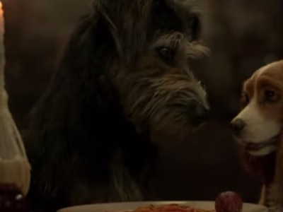 The remake of Lady and the the Tramp hits Disney Plus Nov. 12