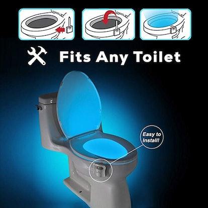 The Original Toilet Night
