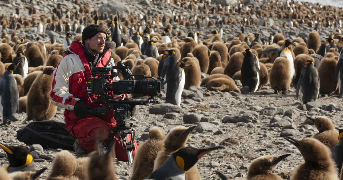 The Emotional Cameraman From David Attenborough's New Doc Left Us With A Truly Powerful Message