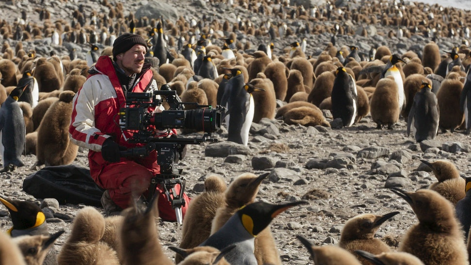 Seven Worlds, One Planet cameraman Rolf Steinmann gave an emotional plea to the world