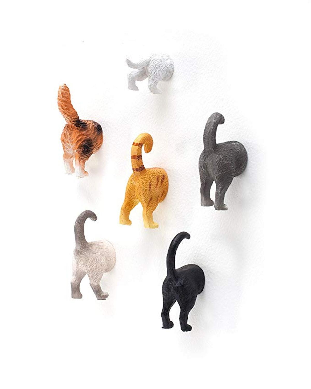 Cat Butt Refrigerator Magnets (6-Pack)