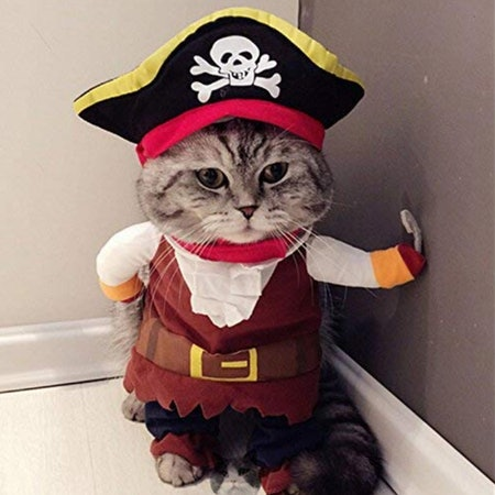 Pirate Cat Costume Suit