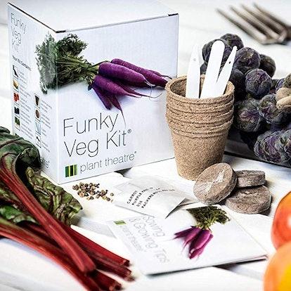Plant Theatre Funky Veg KIT Gift Box