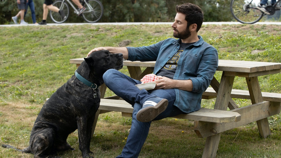 Gary pets his dog Colin at the park on A Million Little Things