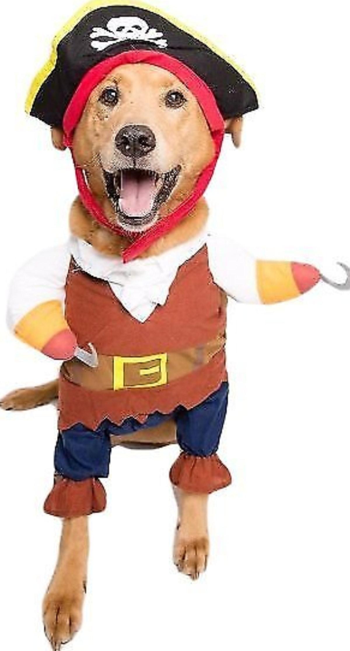 Pet Krewe Pirate Dog Costume