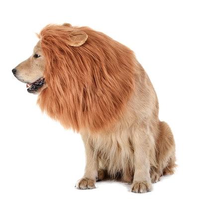 TOMSENN Dog Lion Mane Wig