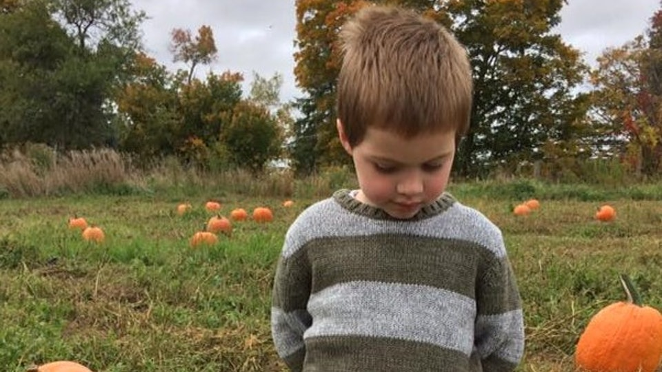 Every trip to the pumpkin patch comes with TMI.