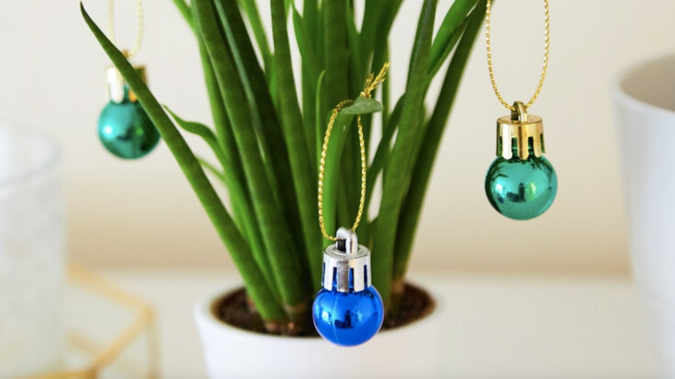 Christmas ornaments for your succulents.