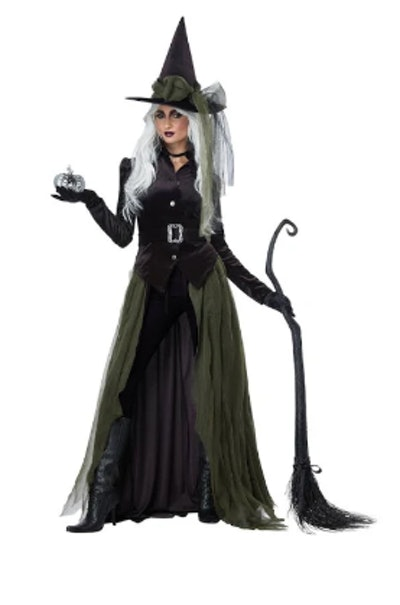 California Costumes 01428 Adult Gothic Witch