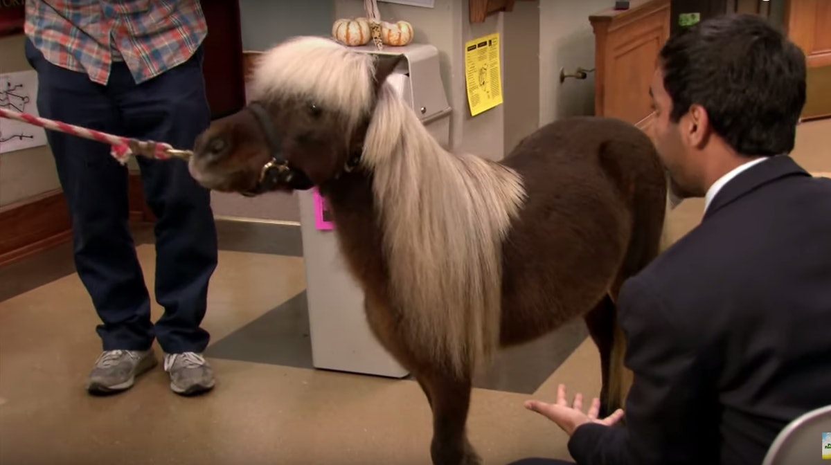 Li'l Sebastian from 'Parks and Recreation' makes a great costume