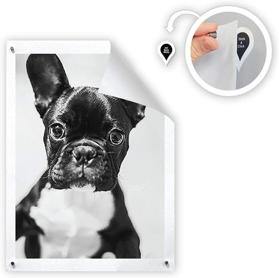 GoodHangups Magnetic Poster and Picture Hangers (8-Pack)