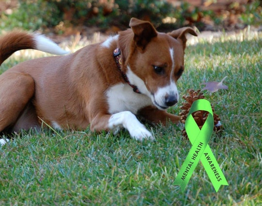 Adding a green ribbon filter to your Facebook profile is one of many ways to support World Mental Day on Oct. 10.