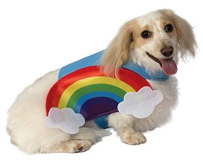 Rainbow Pet Costume
