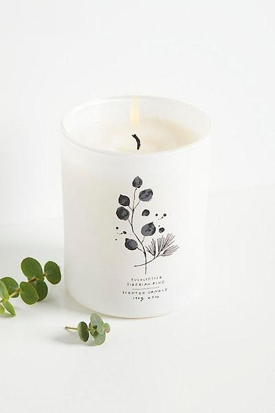 Eucalyptus + Siberian Pine Candle