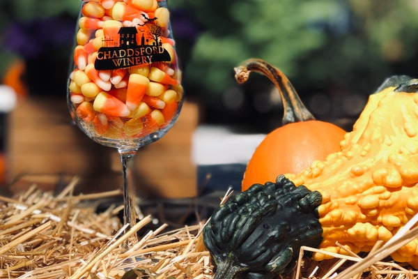 A wine glass filled with candy corn surrounded by pumpkins and hay is a sweet scene from Chaddsford Winery's Adult Trick-or-Treat event.