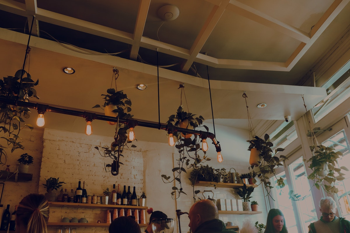 The interior of The Butcher's Daughter in NYC features decorative lighting, wooden shelves with bottles, and hanging plants.