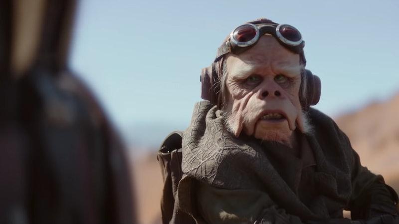 Nick Nolte plays an Ugnaught named Kuiil in 'The Mandalorian'