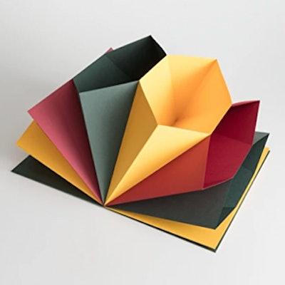 Multi Colored Accordion Folder