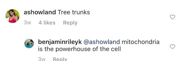 "Temptation Island's Ashley H. comments ""tree trunks"" on Ben's Instagram photo"