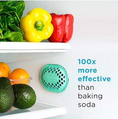 remodeez Refrigerator Deodorizer