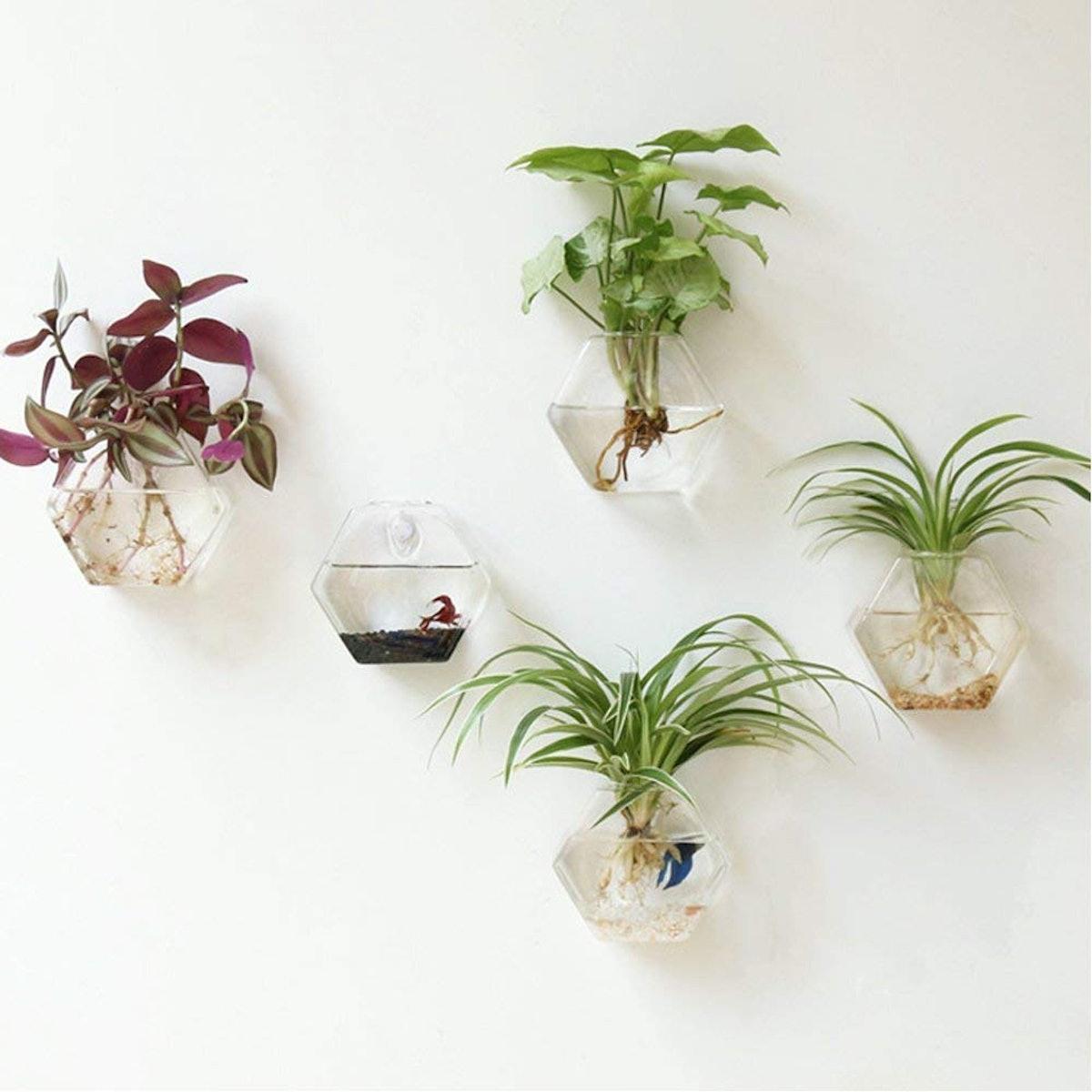 Mkono Terrarium Glass Planters (2-Pack)
