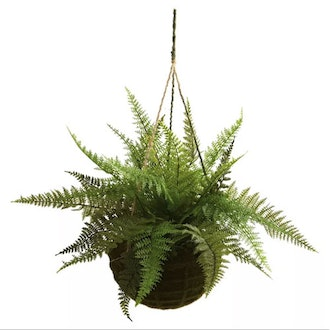 Artificial Leather Fern With Mossy Hanging Basket