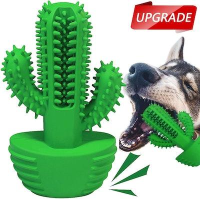 HETOO Dog Teeth Cleaning Cactus