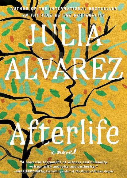 Afterlife by Julia Alvarez is a best book of 2020.