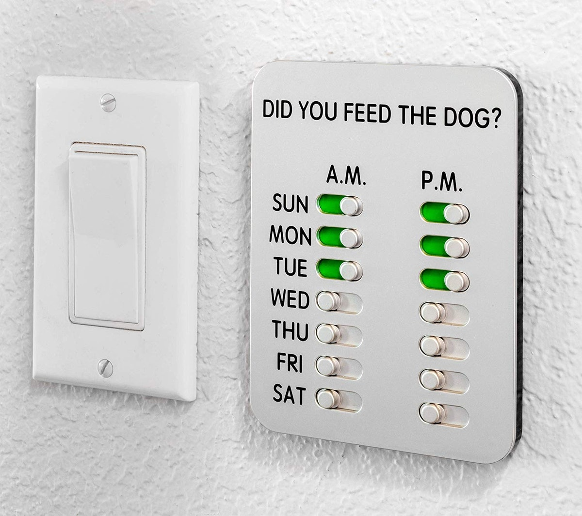 Did You Feed The Dog?