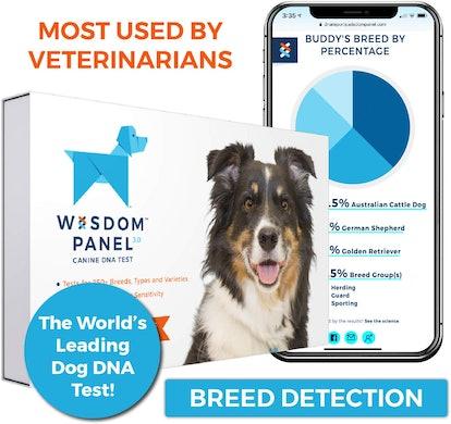 Wisdom Health Canine DNA Test